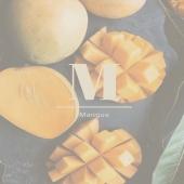 NOS INGRÉDIENTS - MANGUE   Le manguier est un arbre originaire d'Inde et de Birmanie.  Au cœur de la mangue se trouve un noyau plat contenant une graine qui, une fois pressée, produit un beurre beaucoup moins connu que le reste du fruit.  Ce beurre de Mangue contenu dans le Sublime boucle apporte nutrition, brillance aux cheveux et aide à prévenir la formation de fouches.  Vous retrouverez le Beurre de mangue dans le Sublime boucle, notre Baume capillaire sublimateur.   Retrouvez plus d'informations sur le site la-bouclette.com   • • • • • • •#cheveuxcrepus #nappyhair #afrohair #afro #cheveuxbouclés #cheveuxafro #hairstyle #hair #naturalhairgrowth #afrohairstyle #naturalhair #nappy #curlyhair #martinique #guadeloupe #curlyhairstyles #frizzyhair #ingredientsnaturels #sundaycare #france #reunion #reunionisland #afrohairstyle #nappyafro  #naturalhairgrowth #natural #afropunk #labouclette #africanbeauty #ingredients #afrohairstyle #Africa #nappyhair